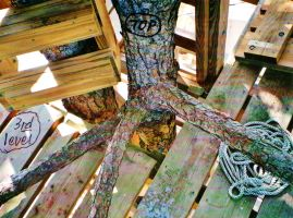 Our Treehouse Built by My Husband {Photo 35} by Empress-XZarrethTKon