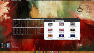 Linux Mint and Cinnamon 2014-07-04 by chriptik