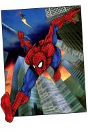 Spider-man by Iconograph