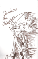 Shadow the Hedgehog OMMGG by Unitheunicorn123