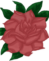 Attempt at Drawing a Rose muro by Roxyielle