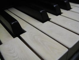 Stock Steinway Keys 10 by darlingstock