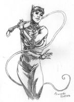 Selina Kyle by midknight23