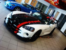 Viper ACR by PhotographiCreed