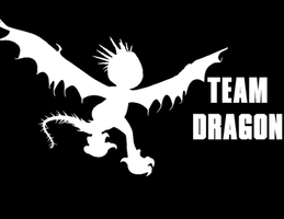 Team Dragon-Nadder by Janna-Hawkins