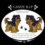 Banner Project CandyRIP by Shadowind