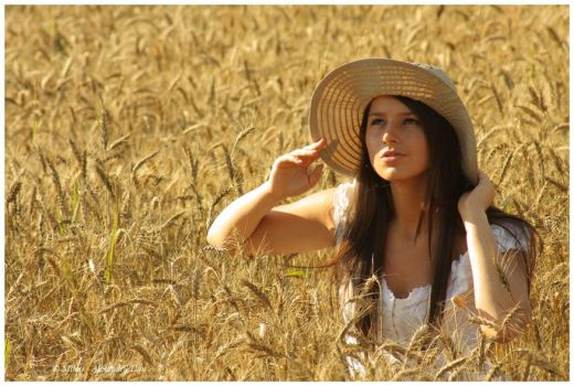 The wheat is ripe by Alexandru-Dan