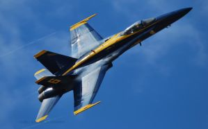 Blue Angels - Cleveland 2010-2 by GTX-Media