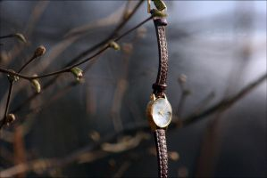 Waiting for Spring by superarianna