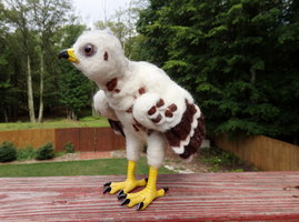 Red Shouldered Hawk Chick Art Doll by DancingVulture