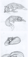 Doodle Dump 3 -Cats- by AnimeFlight