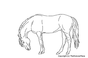 Horse Lineart by TheForeverPlace