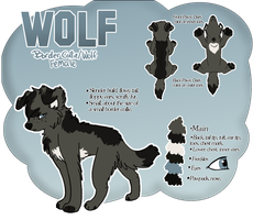 Wolf Reference by xWolfPrincex