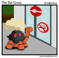 The Tall Grass 4 by BigRedJake