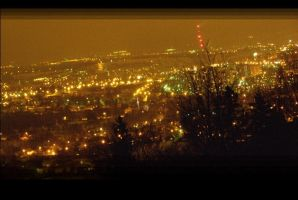 my foggy city - night _2_ by yeah-thats-me