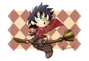 Chibi Quidditch Harry Potter by kiki-chan78