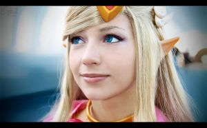 Toon Zelda IV by EnchantedCupcake
