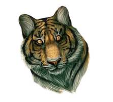 Tiger headshot by eliza1star