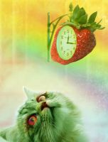 Strawberry Cat by lilastudio
