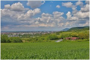 View over the Rhine valley pt.2 by bibamus-pd