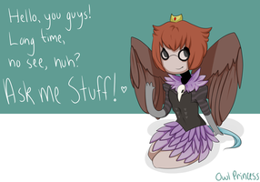 Ask Owl Princess by Ask-Owl-Princess