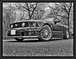 mustang             .. by psycko91
