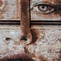 FACE by lomatic