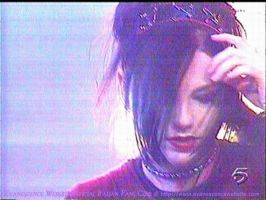 Amy Lee - concert photo by danin