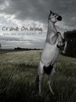 Crane On Wing by Horsemaster--WIZ