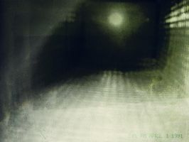 House of Leaves - Exp. No. 5 by Dangerous-Nargle