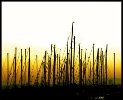 Masts by Dogbytes