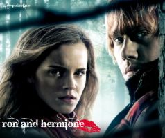 ron and hermione . by lady-pokerface