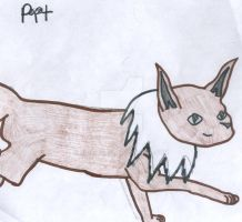 Pit by Sunfall16