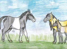My Entry for the foal contest by Jackpot700