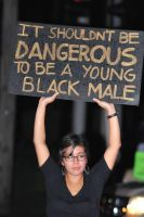Racist USA: It Shouldn't be Dangerous to be Black by Valendale
