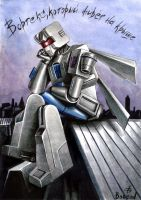 TF - Vortex-on-the-roof by Boread