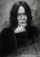 The Half-Blood Prince by Akadio