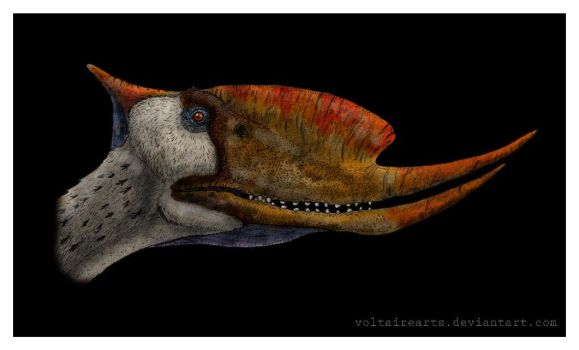 Dsungaripterus color by VoltaireArts