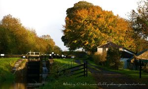 Autumn Canal Cottage, Ireland by fluffyvolkswagen