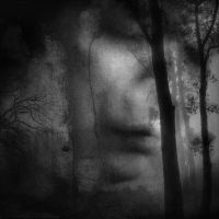 Indelible tearstain by Menoevil