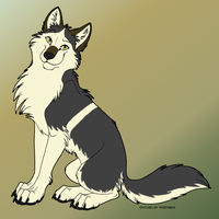 Sitting Wolf by SolidStomak