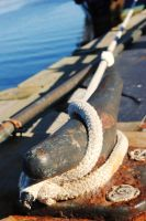 Dock Cleat by Bawwomick