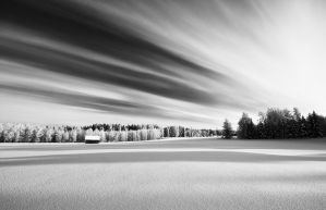 In The Winterland by Nitrok