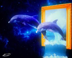 Dolphins by dehouse42