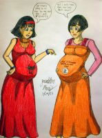 Pregnant Videl: Past meets Future by JAM4077