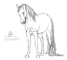 Standing Horse Lineart. by paigepony