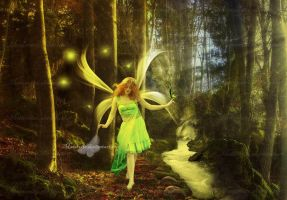 The Walk Of The Fairies by maiarcita