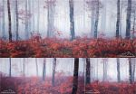Triptych 3 - Autumn Walk by 3DLandscapeArtist
