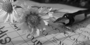 Writing... by M-picz