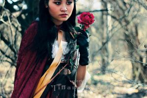 Little Rose Red by bejeweledmoonphoto